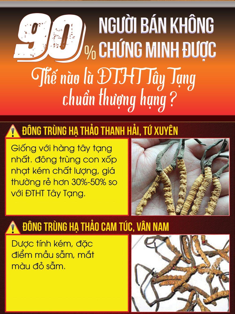 Đông trùng Tây Tạng nguyên con