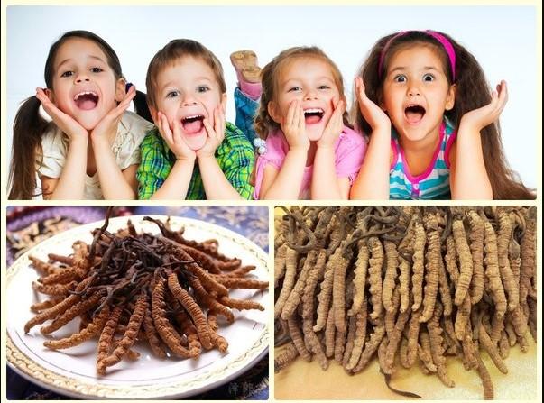Trẻ em có được sử dùng đông trùng hạ thảo