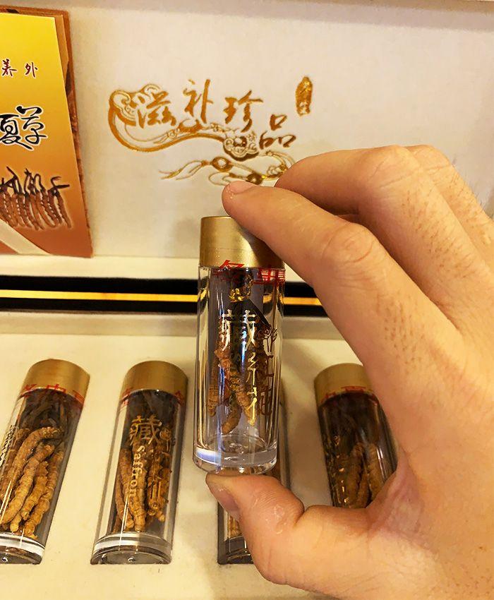 Đông trùng hạ thảo Tây Tạng 10g/hộp D002 13