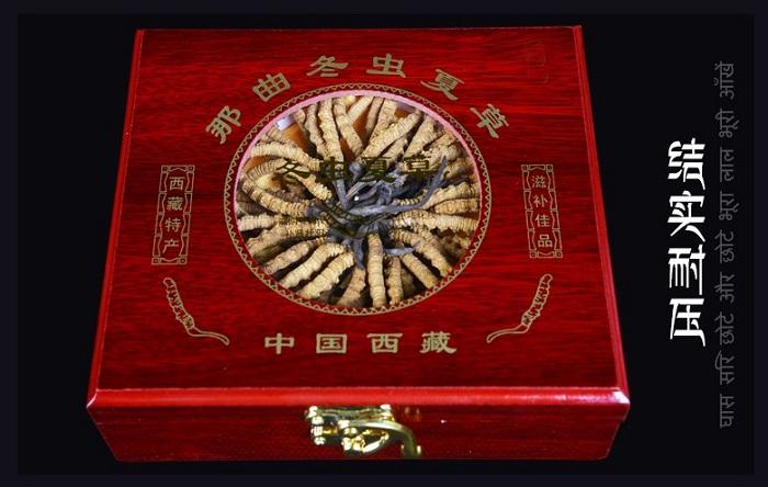 Đông trùng hạ thảo Tây Tạng nguyên con hộp 100gr loại 160 con 1