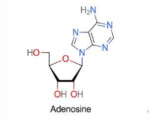 Adenosine là gì